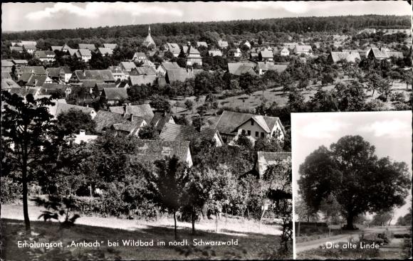 Arnbach Neuenbürg Enzkreis, Alte Linde mit Blick auf den Ort
