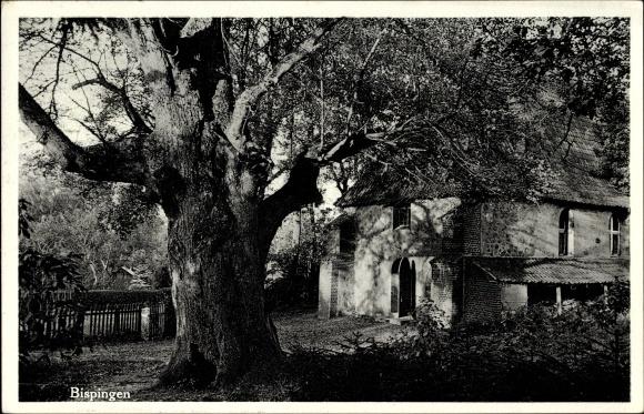 Wilsede Bispingen im Heidekreis, Alte Kirche mit 500 jähriger Linde