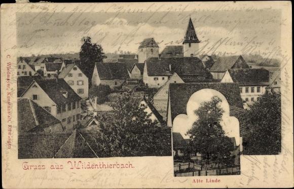 Wildentierbach Niederstetten BW, Ortschaft, Alte Linde