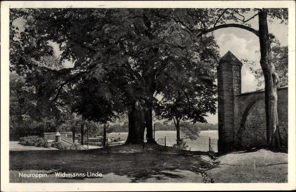 Neuruppin in Brandenburg, Blick zur Wichmanns Linde